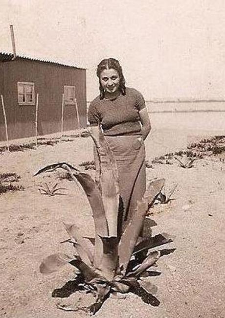 L'8 agosto 2015, all'età di 98 anni, ci ha lasciato la combattente di Spagna Ada Grossi